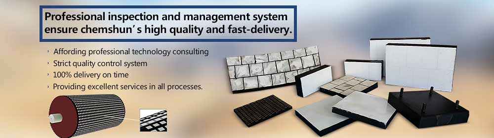 Professional inspection and management system.